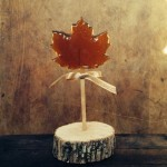 'Giant' Maple Lollipop