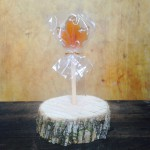 This photo display our Pure Maple Lollipop.